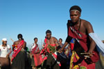 Traditional Swazi Dancers