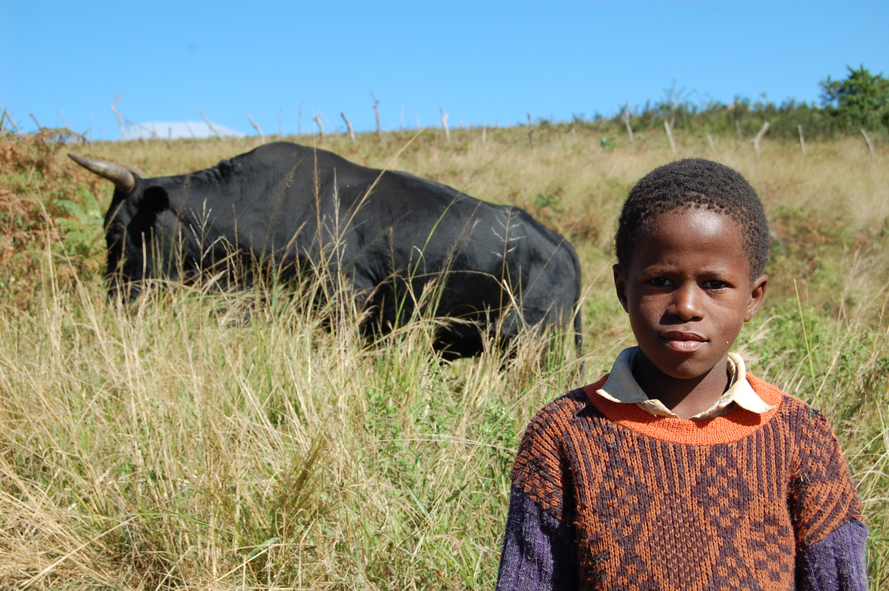 Swaziland images gallery page3 together with Page3 furthermore  on page3